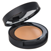 BareMinerals Correcting Concealer SPF 20 Tan 2 2g