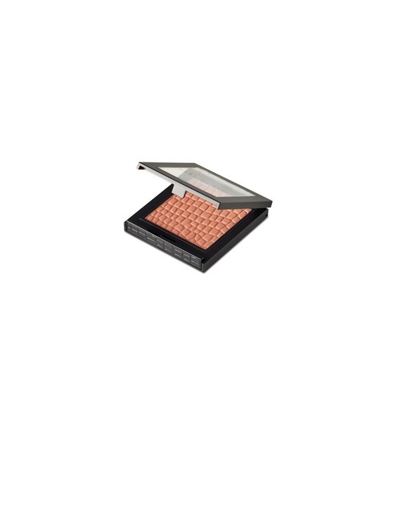 Make Up Store Blush Lust